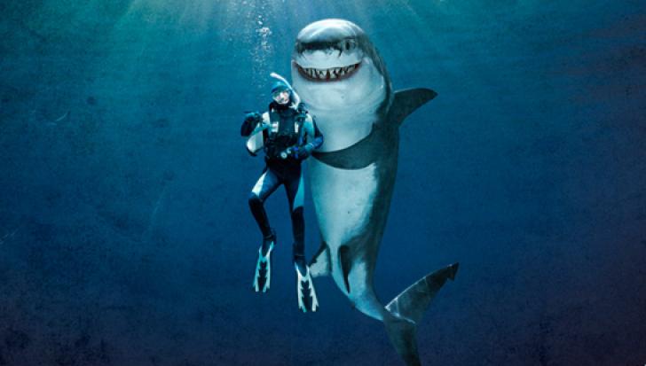 lucruri ciudate rechini