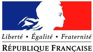 tricolorul francez